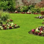 5 Reasons Why You Should Hire a Landscaping Company in Clark County