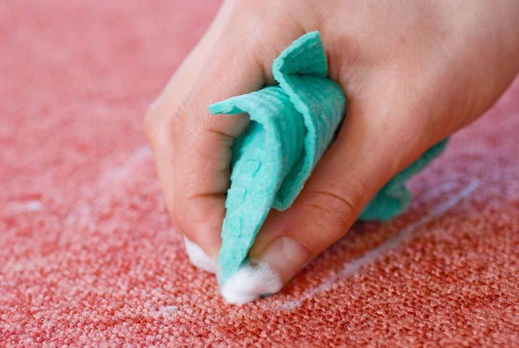 Allow Carpet To Dry Completely
