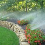 Why Is Efficient Irrigation a Must for Your Yard?