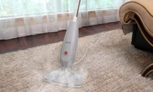 7 Things to Prepare Before Steaming Your Carpet