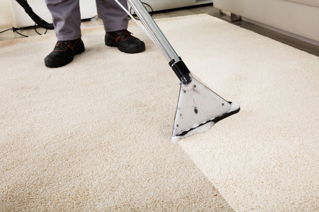 Top Tips To Help Your Carpets Last Longer 183 Wow Decor