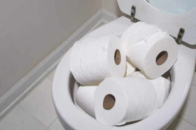 Too Much Toilet Paper