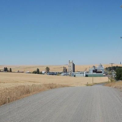 Farming wheat is a main staple of the Nezperce idaho economy