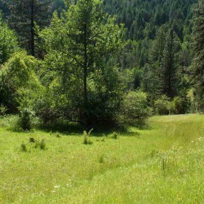 Land For Sale Harpster Idaho