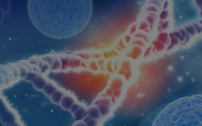 Hereditary cancer risks: how information can open up opportunities