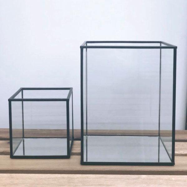 black-glass-terrariums