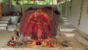BSD New Ganesh Mandir 2013