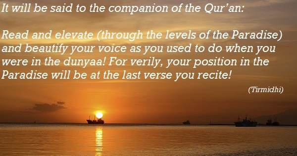 Learn Quran Kids - Course towards paradise