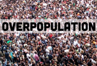 Control population: Ensure the Survival of Environment