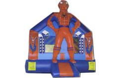 Spider Boy