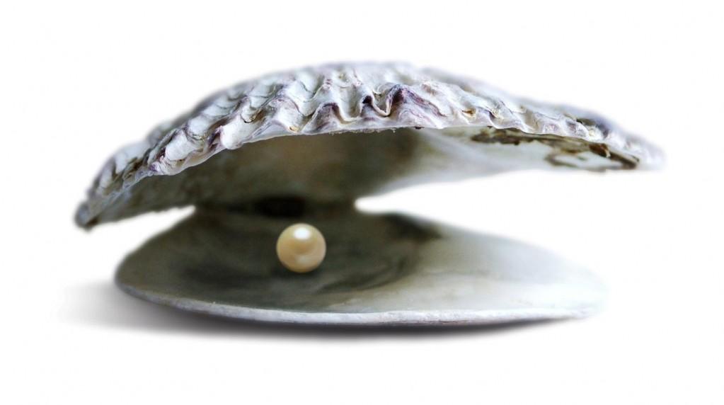 pearl-1023x572