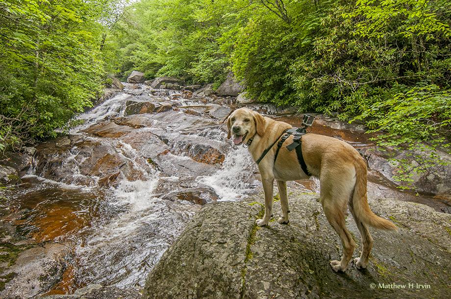 That is a great creek! Matt said it was called Wilson Creek.