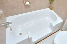 Wheelchair Access Bathtub