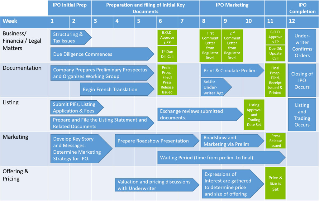 CSE the IPO Process copy
