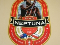 Pimo-Neptuna-Beer-100-Percent-Polyester