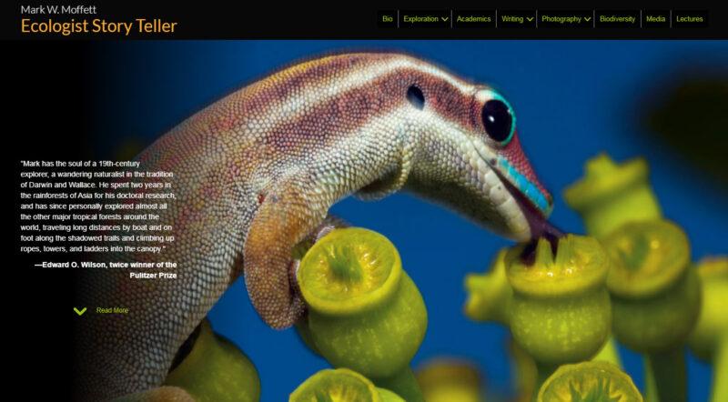 author-website-design-adrian-kinloch