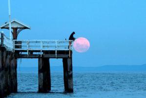 Pesca e fasi lunari