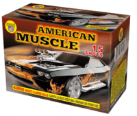 American Muscle - 15 Shots - 200 Gram Aerials - Fireworks