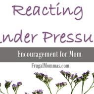 Reacting Under Pressure : Encouragement for Mom