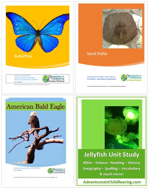 homeschool giveaway - wildlife adventures unit studies
