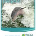 homeschool giveaway dolphin unit