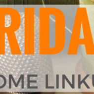 Friday Home Linkup 24 – Frugal Mommas DIY Home and Garden