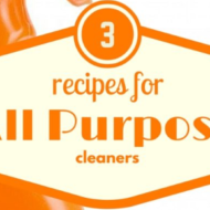3 Frugal Recipes For All Purpose Cleaners
