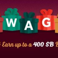 Holiday Gift Card Bonus with Swagbucks