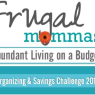 Organizing and Savings Challenge: Save $1300 – $3900+ Yearly