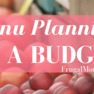 Menu Planning On A Budget