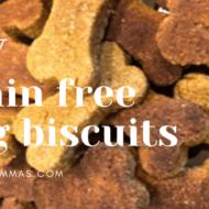 DIY Grain Free Dog Biscuits