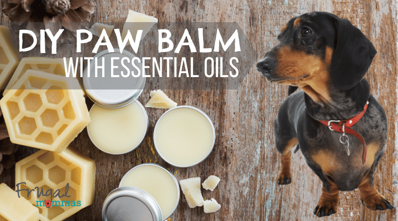 DIY Paw Balm for Pets with Essential Oils