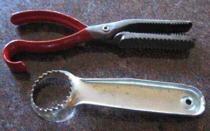 fish griper & scaler
