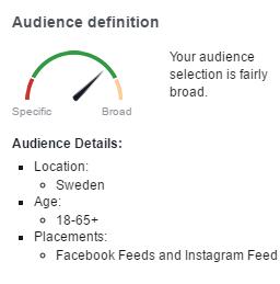 Facebook Audience Details