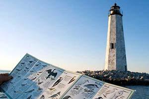 Newpoint Comfort Lighthouse