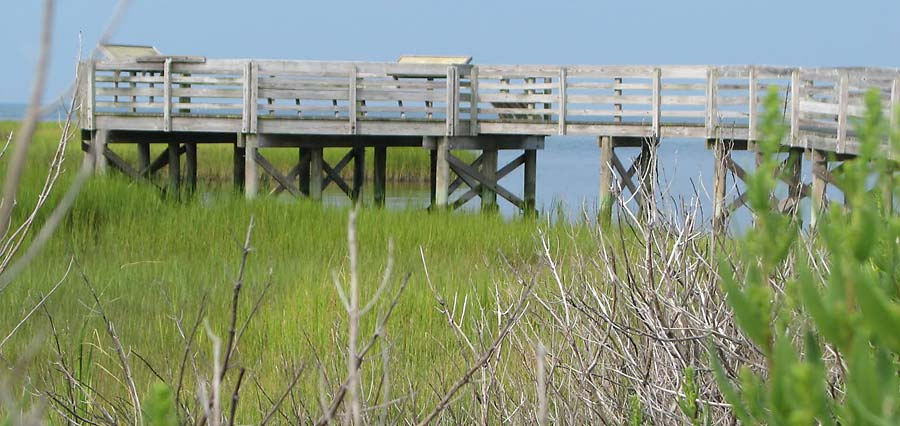 New Point Comfort Preserve - Observation Walkway