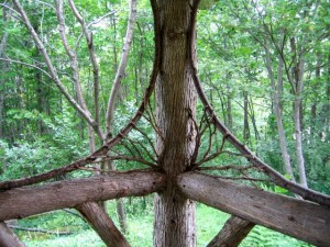Harmony-With-Nature Tree Assemble