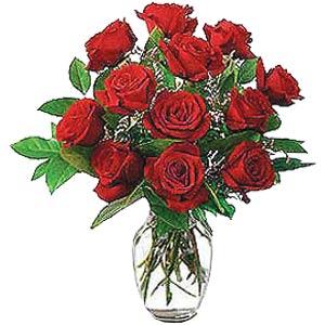 12_red_roses_vase