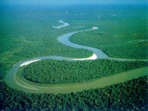 Amazon River (10)