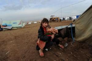 Syria Duhok-Domiz 302