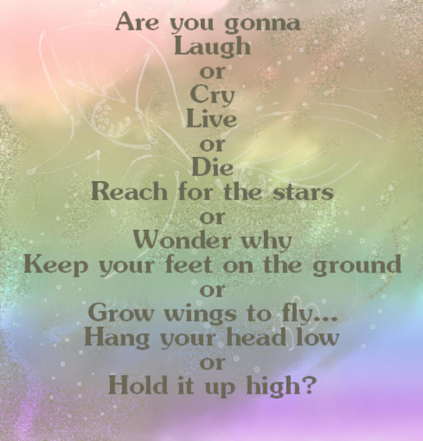 reach-for-the-stars-belinda-borradaile