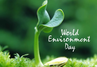 World_Environment_Day2013_freecomputerdesktopwallpaper_p-400x277