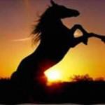 earth-horse-150x150