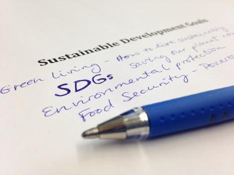 Writing Contest SGDs 2