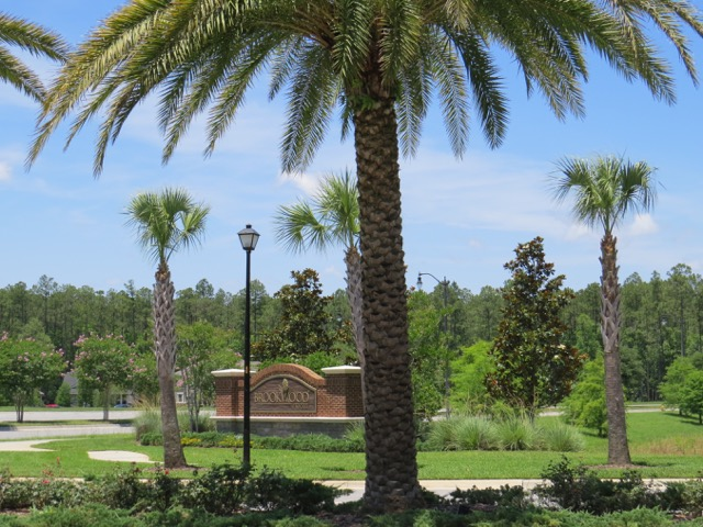 West entrance with palms