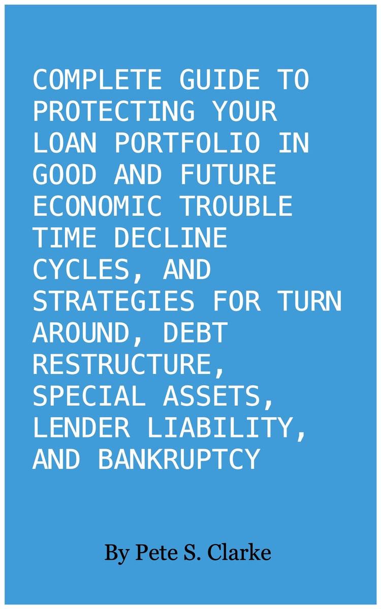 Loan Portfolio book