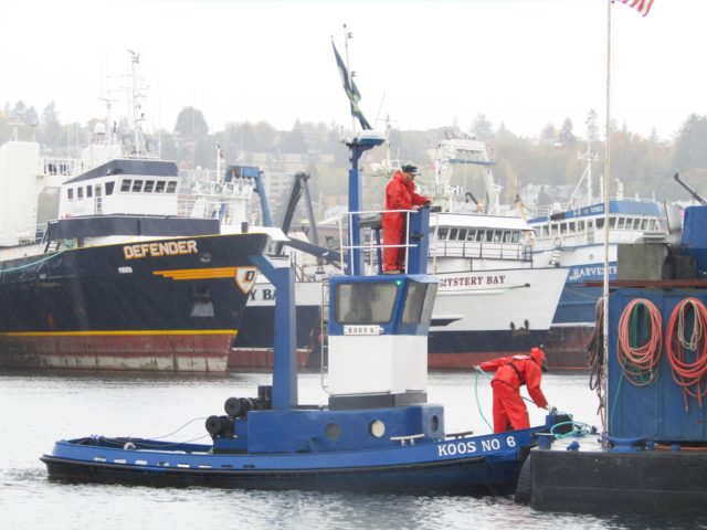 Seaborn Pile Driving, Tug Koos, Capt. Jason, Running a barge back, Pro's at Residential Marine Construction, Photography by: Salty Dog Boating News, PNW