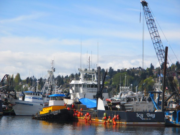 F/V Northwestern, Deadliest Catch Shooting A Commercial, Tug Wasp, Icy Bay Tossing in a Gillnetter, Fishermen's Terminal