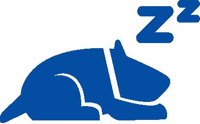 dog sleeping icon (blue)