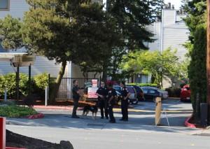 Robbery search in Everett, WA